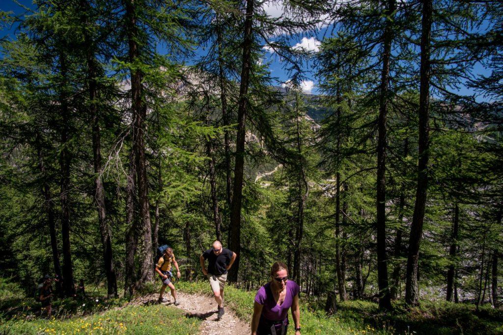 Wandern Col du Cros in Frankreich