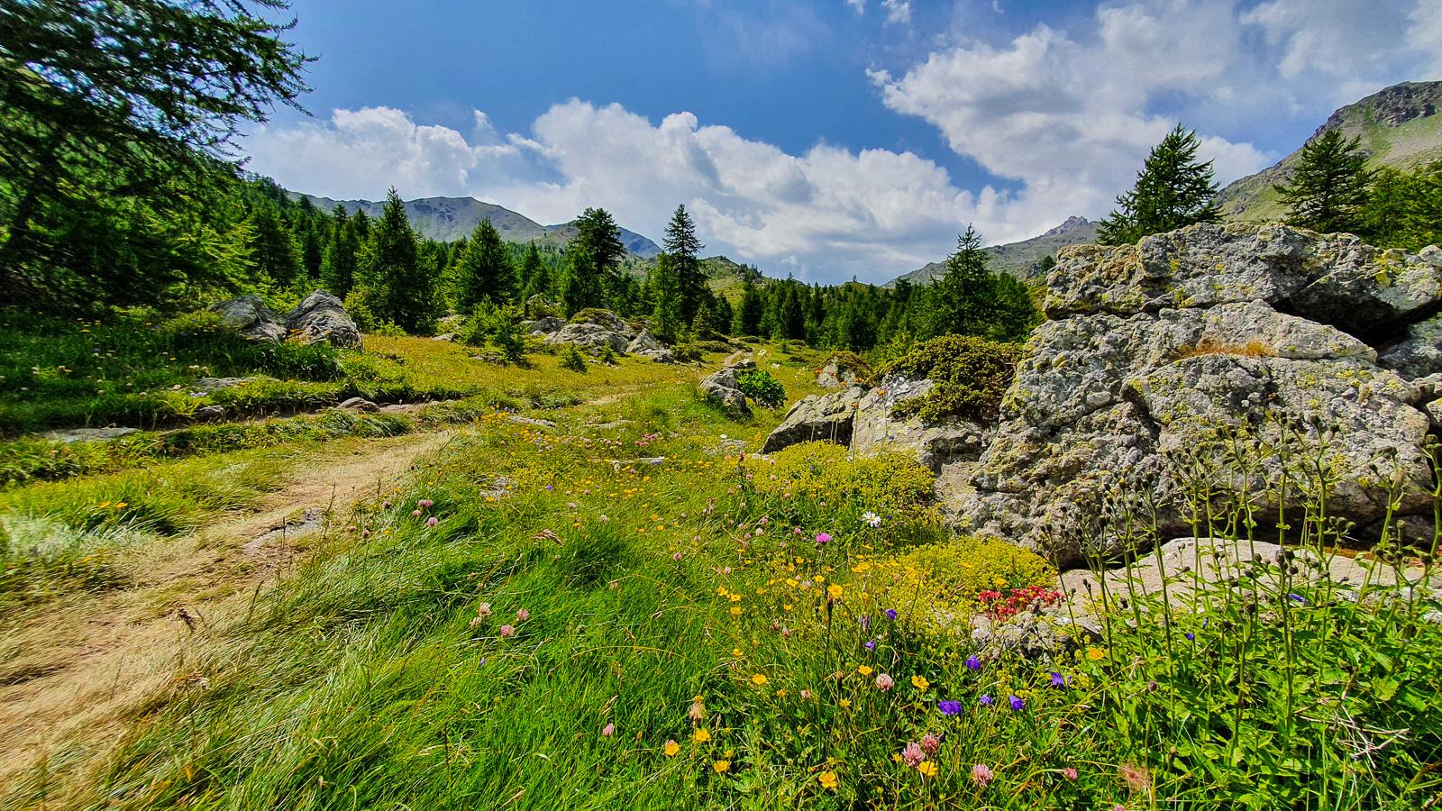 Die Berge Frankreichs